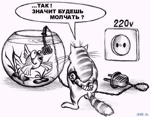 Кошачье гестапо