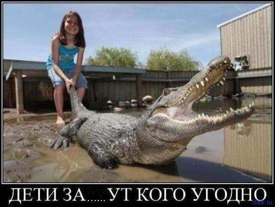 Мама, смотри какой крокодильчик тебе на новую сумочку....