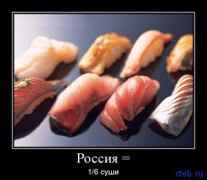 1/6 суши