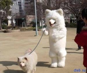 каков хозяин, такой и пес