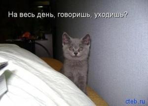На весь день, говоришь уходишь?