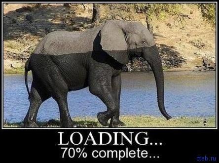 Скачай слона