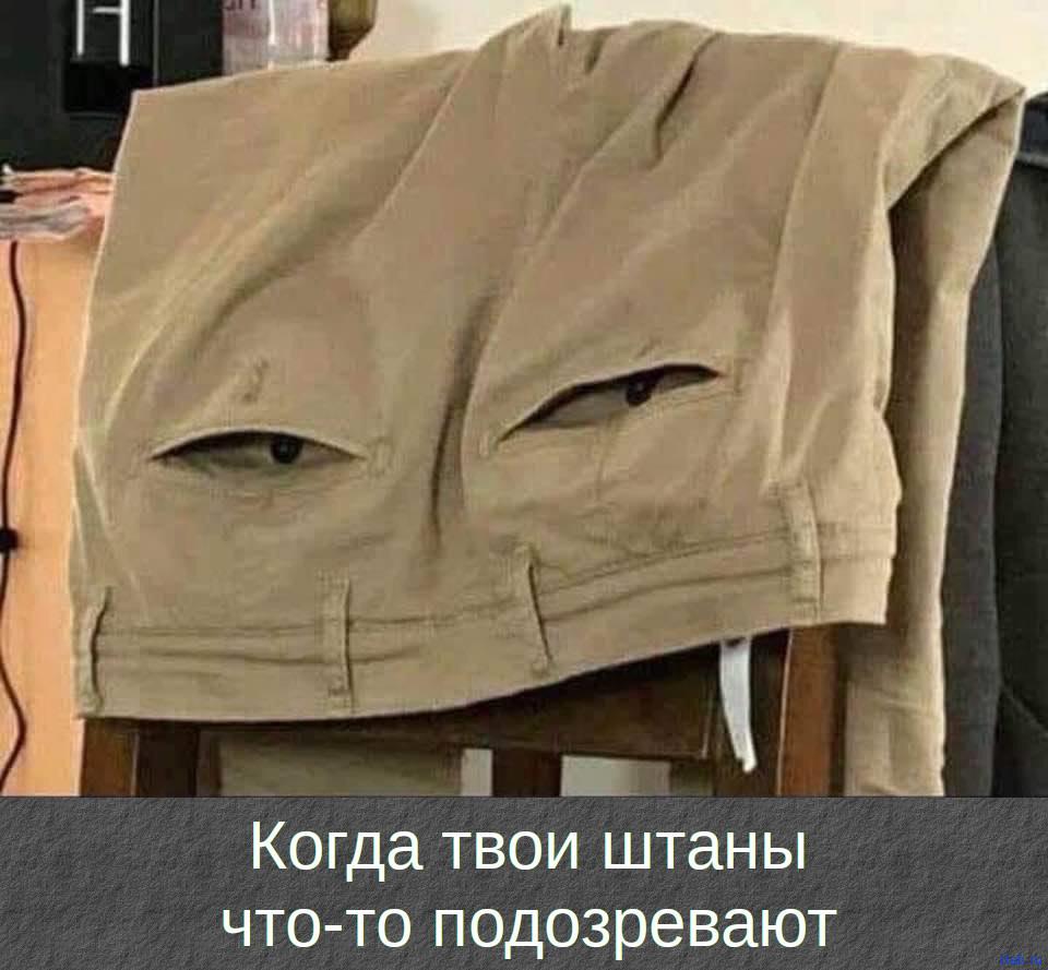 Когда твои штаны что-то подозревают