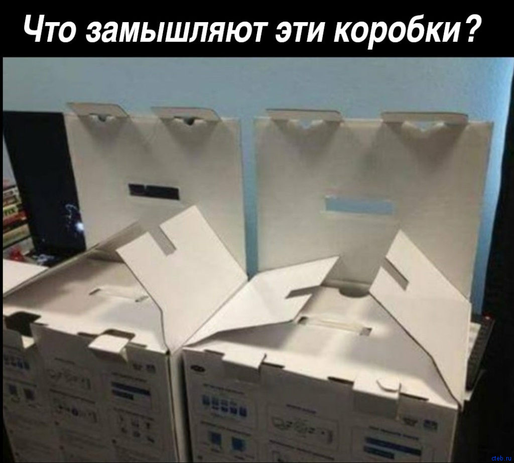 Что замышляют эти коробки?